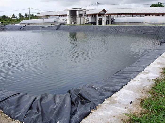 Aquaculture-geomembrane-liner